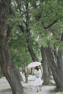 森林中行走的女孩背影图