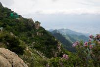 泰山壮观的风景
