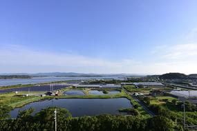 日本大阪的田园水利风光