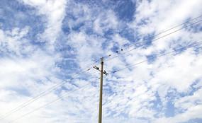 蓝天白云下的电线杆
