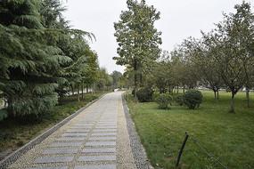 空旷的公园