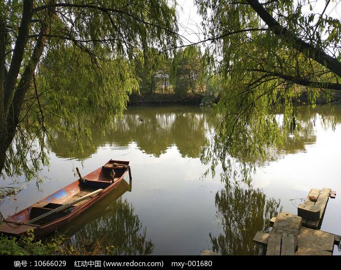 垂柳渔船图片