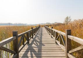 湿地公园的木栈道
