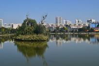 城市湖泊风光图片