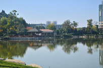 公园湖泊风景