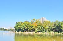 蓝天下的湖泊树林风光