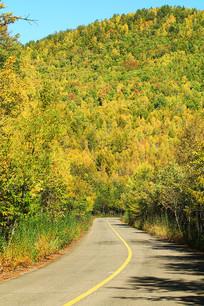 大兴安岭林区山路秋季风光