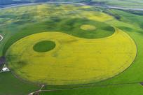 内蒙古农田太极图风景(航拍)