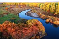 内蒙古牙克石河湾五彩林