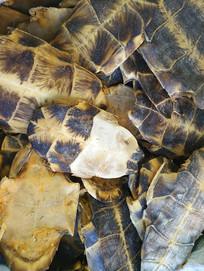 药材乌龟壳