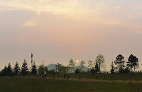 黄昏时的上海辰山植物园