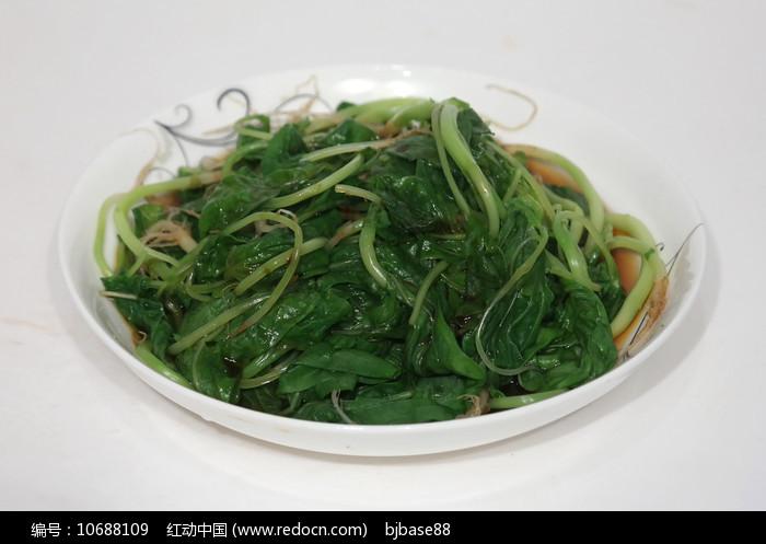 清炒红薯叶子图片