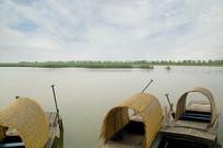 北京野鸭湖湿地的小木船