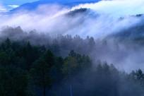 大兴安岭层峦叠嶂云雾迷蒙