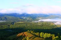 林海密林云雾