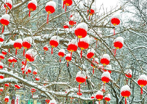 公园雪景红灯笼