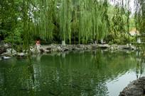 济南趵突泉公园无忧泉风光