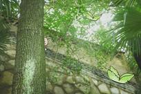 绿光森林-蝴蝶创意绘画