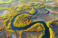 航拍金秋彩林蜿蜒的河流