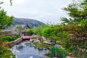 新农村水域景观