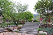 园林景观-石阶