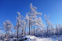 大兴安岭山林冰雪雪景