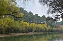 初秋湖泊风景
