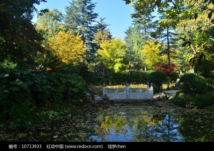 初秋湖泊树木风景图片图片