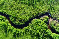 航拍树林河流景观