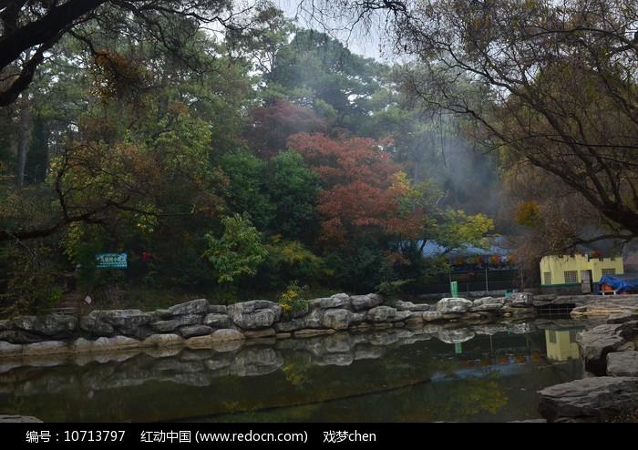湖边树木风景图片