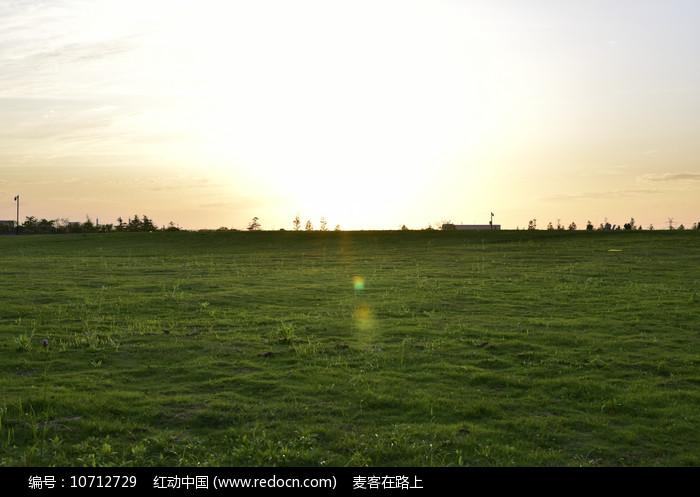 午后的草地图片