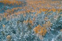 航拍大兴安岭林海彩林秋雪