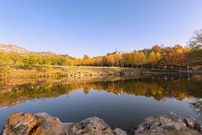 金色的秋天湖泊
