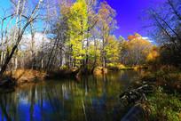 森林河彩林风光