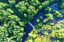 大兴安岭绿色林海河流桥梁