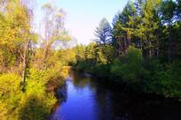 大兴安岭密林河流