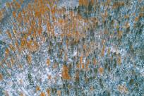 航拍彩林秋雪