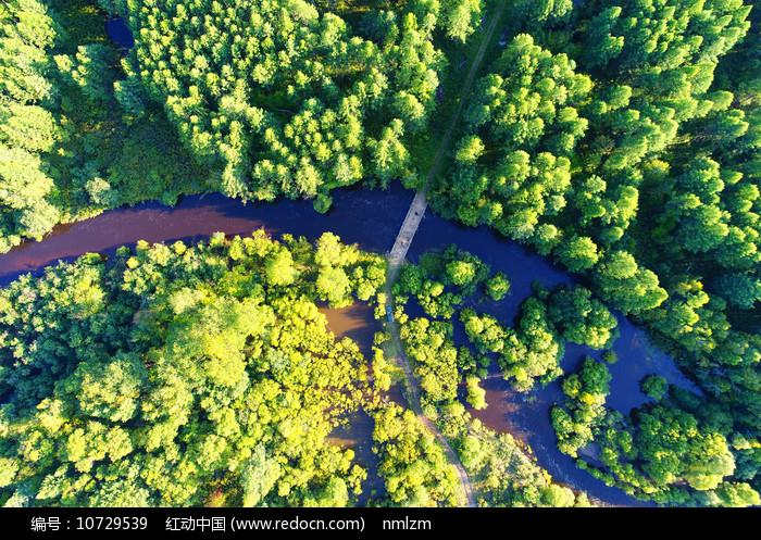航拍大兴安岭森林河风景图片