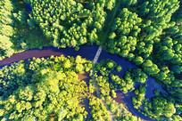 航拍大兴安岭森林河风景