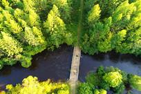 航拍森林河桥梁