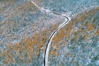 山林秋雪蜿蜒的山路