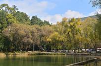金秋山水风景