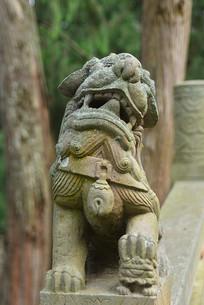 石栏杆柱头狮子雕塑