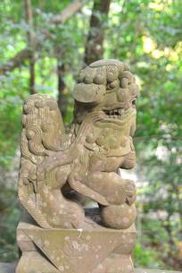 石栏杆柱头狮子石雕