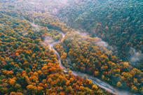 长白山密林秋色河流蜿蜒