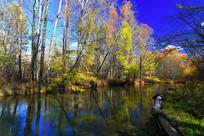大兴安岭河流彩林秋景