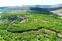 航拍河湾绿树林
