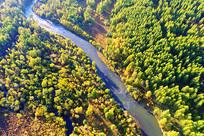 航拍茂密林海河湾秋色