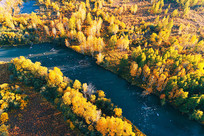 秋季金色树林河湾