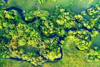 森林山溪秋色
